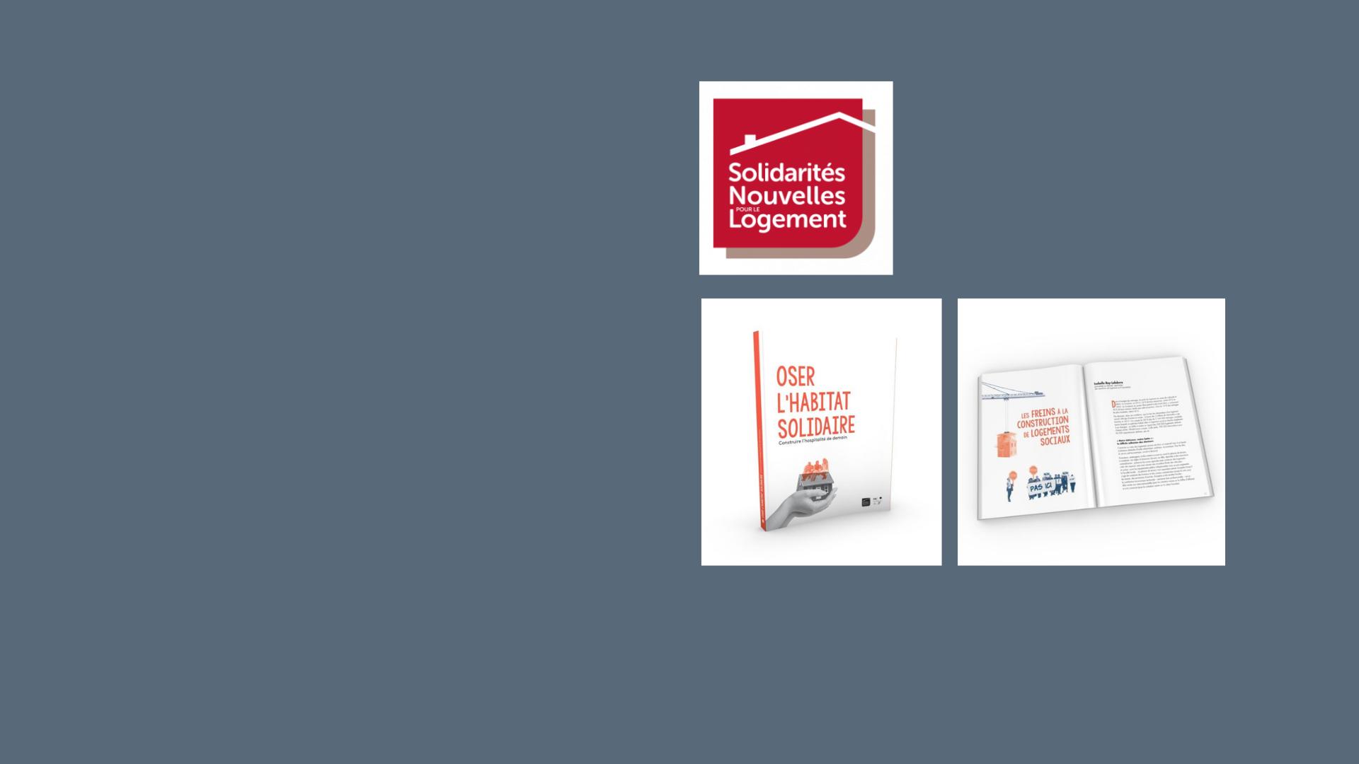 Solidarités Nouvelles pour le Logement publie un livre en faveur de l'habitat solidaire